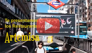 Vegetarian restaurants Artemisa Madrid videos